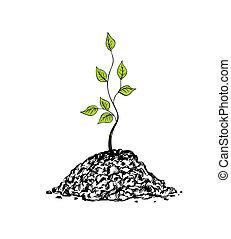 Tree sapling - Illustration of tree sapling on white ...