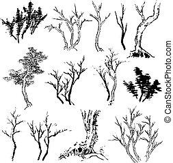 tree set design