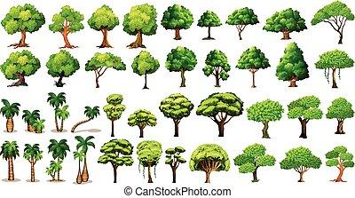 Tree set - Diversity of trees set on white