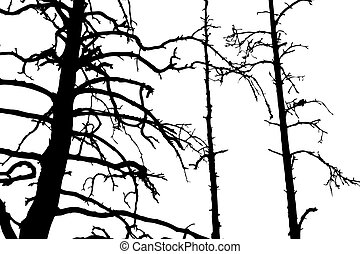 tree silhouette on white background, vector illustration