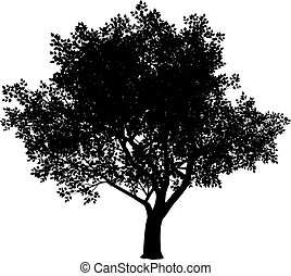 Tree silhouette - Vector black and white tree silhouette....