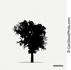Tree silhouette. Vector illustration.