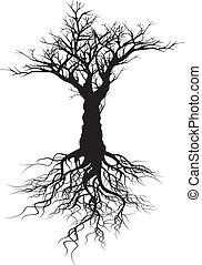 Tree silhouette - Vector tree silhouette