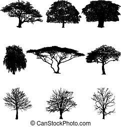 tree silhouettes vector illustration - Set of tree...