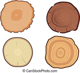 Tree slices vector set - Wood slice texture wooden circle...