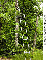 tree-stand, chasseurs