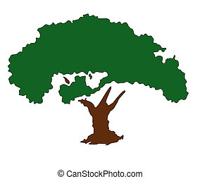 Tree, symbolize growth and wealth