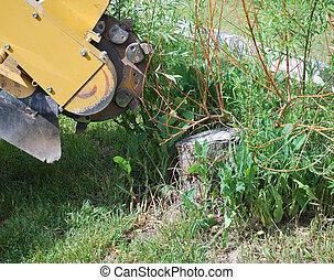 Tree stump machine. - Tree stump machine removing an old...