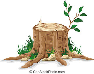 Tree stump - Young branch on the old tree stump. Detailed ...