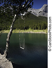 Tree Swing in the Mountains