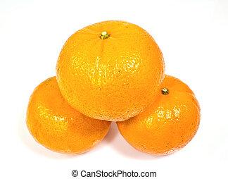tree tangerines isolated on white background