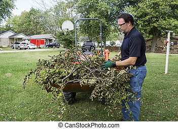 Tree Trimmer Loading Branches In Tractor Bucket