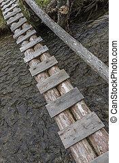 Tree trunk bridge over a creek