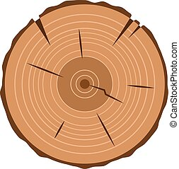tree trunk cross section, isolated on white, clipping path...
