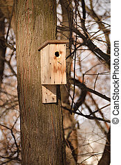 trunk in early spring with a simple wooden house for birds