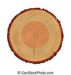 Tree trunk rings vector texture isolated - Tree rings, tree...