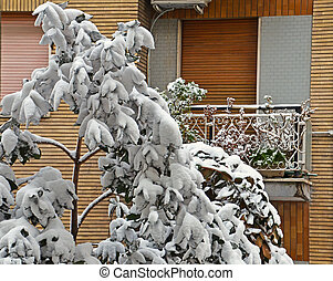 tree under snow in front of a window