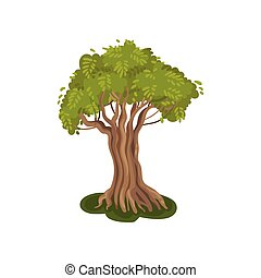 Tree with a striped trunk. Vector illustration on white background.