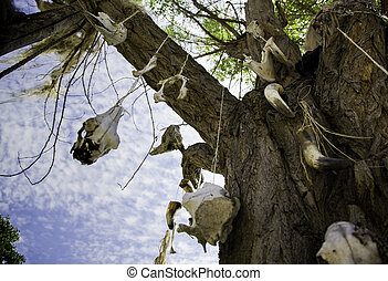 Tree with animal skulls, detail of witchcraft and...