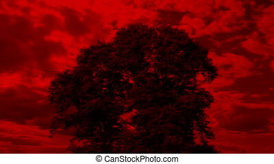 Tree With Apocalyptic Red Sky - Apocalypse concept with...