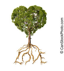 Tree with foliage with the shape of a heart and roots as text Love. On white background.