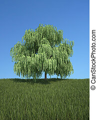 Tree with grass and blue sky