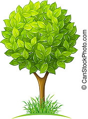 tree with green leaves vector illustration isolated on white...