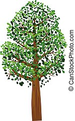 Tree with green leaves vector icon