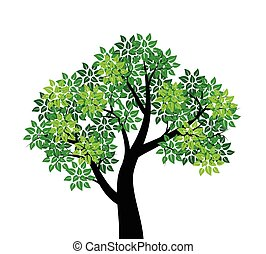 Tree with green leaves