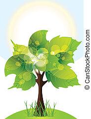 tree with lush green foliage