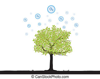 tree with oxygen floating up to atmosphere