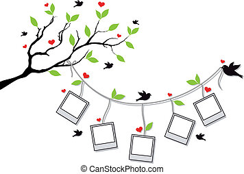 tree branch with blank photo frames and birds, vector background