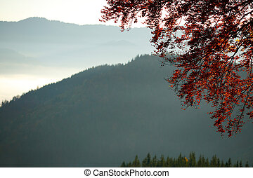 Tree with red leaves on a background of mountains