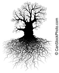 Tree with roots - Illustration of a leafless oak tree with...