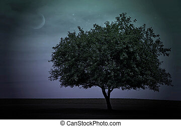 tree with twilight sky