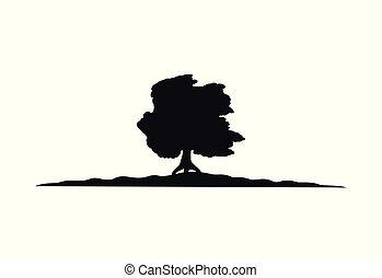 Tree wood8