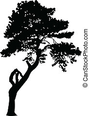 tree2 vector silhouettes