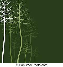 tree5, 抽象的