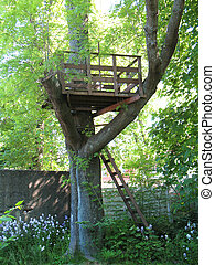 Wooden tree fort in large old tree, summer.