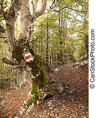 Treek Marker
