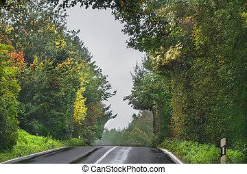 treelined, plattelandsweg