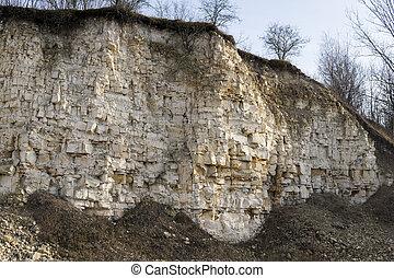 trees above limestone outcrop
