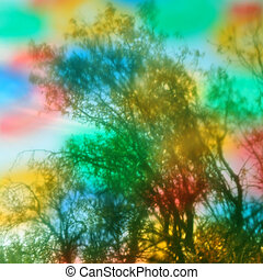 trees abstract colors