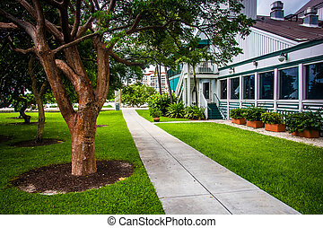 Trees and building along a path at South Pointe Park, Miami Beac