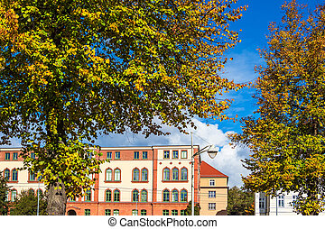 Trees and building in autumn in the city Rostock, Germany.