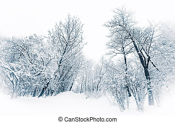 Trees and bushes under heavy snow in a blue winter tone
