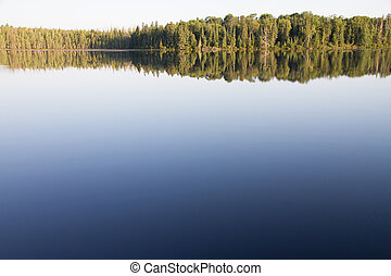 Trees and Clear Sky Reflected in Still Water