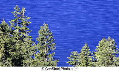 Trees and Crater Lake - Crater Lake National Park, Oregon