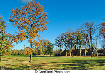 Trees and farm in Dutch landscape