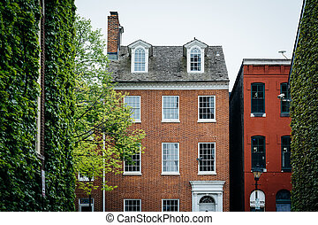 Trees and historic houses in Fells Point, Baltimore, Maryland